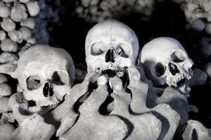 2748191-skulls-and-bones-in-a-tomb