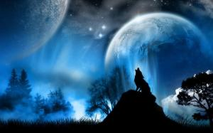 hd-lone-wolf-pictures