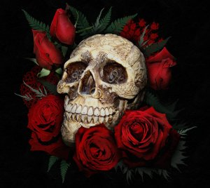 skull and red roses by serenity nme