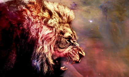 outer-space-stars-animals-lions-1680x1010-wallpaper_www-animalhi-com_6